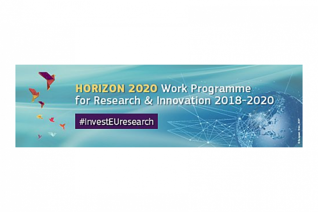 Horizon 2020: Governance for the future