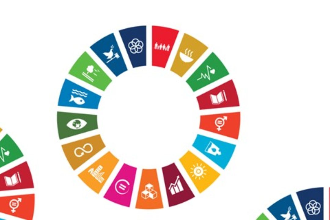 How does your city perform in achieving the SDGs?